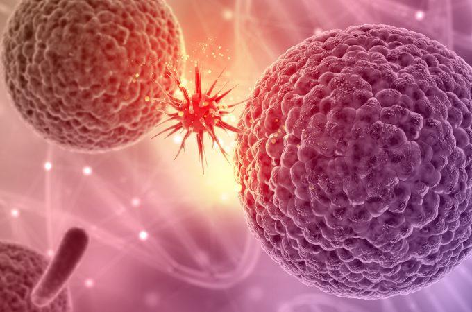 Nettoyez vos cellules malades grâce à l'autophagie